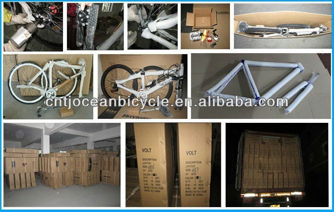 CE & ISO9001 report MTB bike mountain bicycle