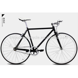 2014 Tianjin Newest Steel DIY Fixed Gear Bicycle OC-700C104S