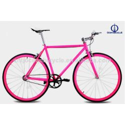 Steel Fix Bike / One Speed Bicycle/OBM DIY bicycle