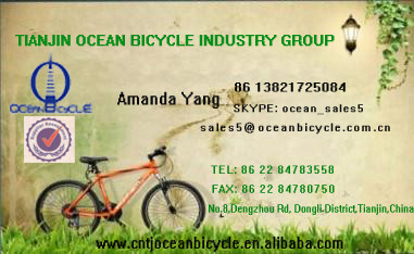 China 21 Speed Mountain Bike OC-26025S