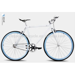 2015 Tianjin Newest Steel DIY Fixed Gear Bicycle OC-700C105S