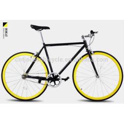 2014 Tianjin Newest Steel DIY Fixed Gear Bicycle OC-700C107S
