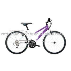 mountain bicycle