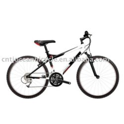 China Factory 24 Mountain Bicycle