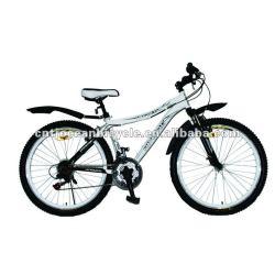 Cheap mountain bike for ladies.