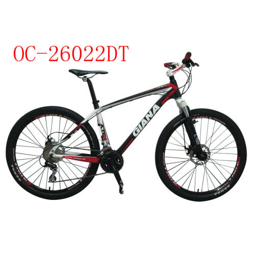 High quality fashion style mountain bicycle on sale