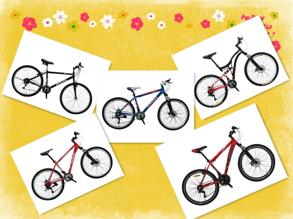 alloy mountain bike/bicycle with high quality
