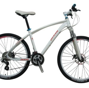 cheap and fine mtb bike for sale