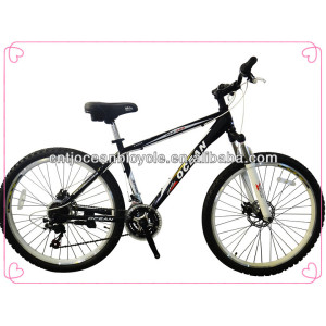 New Steel Mountain Bike OC-26012DS