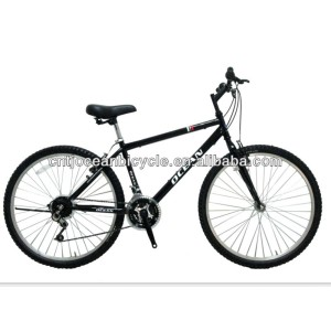hot cheap economic steel bicycle mountain bike for sale