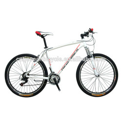 large supply mountain bike from China factory