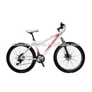 Mountain Bike OC-N26001DS