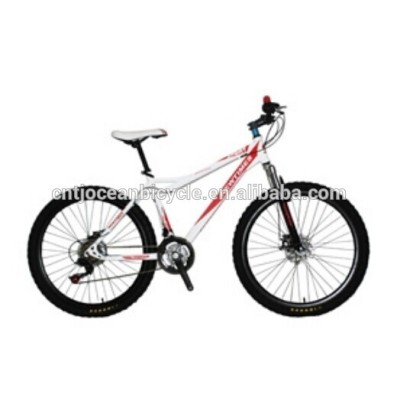24 INCHES ALLOY FRAME 18 SPEED Mountain Bike
