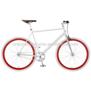 Tianjin Single Speed EN Approval/Certificate Fix Gear Steel Bicycle Hot Sale