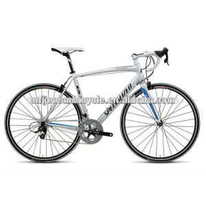 Top sale road bike /road bicycle/ racing bike/ bicycle