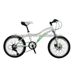 2014FASHION!!! 20 inch steel BMX