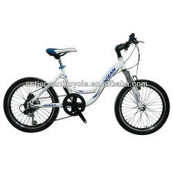 FASHION!!! 20 inch steel BMX/bmx bike