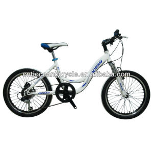 FASHION!!! 20 inch steel BMX/bmx bike