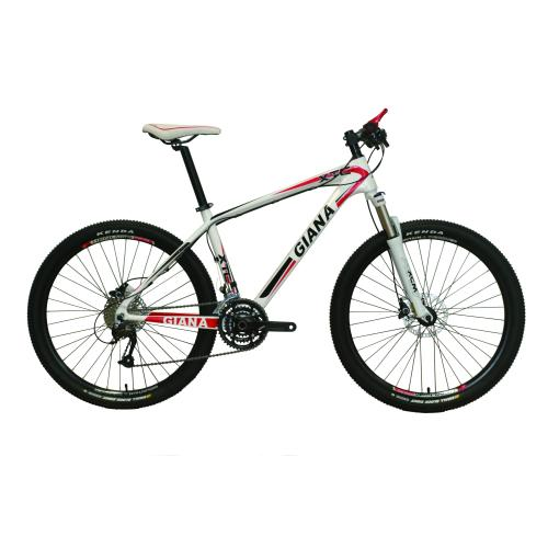 26 INCHES CARBON FIBER MOUNTAIN BIKE  FOR SALES