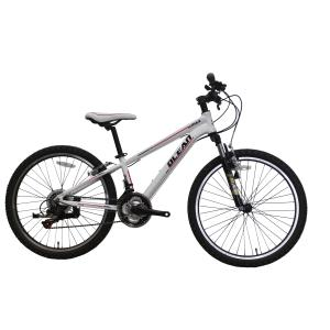 HIGH QUALITY 24INCH ALLOY FRAME MTB