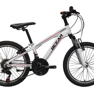 Factory Produce Mountain Bike 20 Inch
