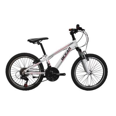 Factory Produce 20 Inch Mountain Bike