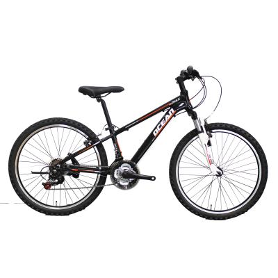 24 INCH ALLOY SUSPENSION FORK AND FRAME MOUNTAIN BICYCLE