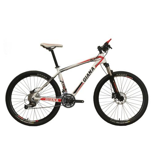 26 INCHES CARBON FIBER MOUNTAIN BICYCLE FOR SALES