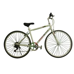 2015 hot sale ROAD bicycle with HI-TEN frame