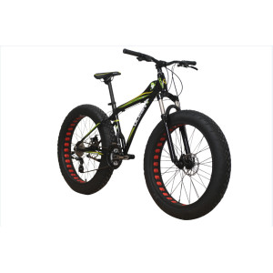 2020 new design FAT BIKE 4.0 SNOW BIKE