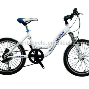 lovely children bicycle kids bike