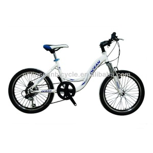 lovely children bicycle kids bike