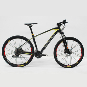 CARBON FIBER FRAME Mountain bike