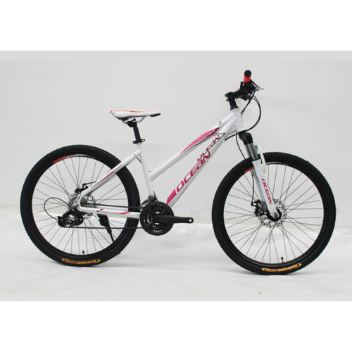 26 INCH ALLOY FRAME AND STEEL SUS FORK Mountain bike