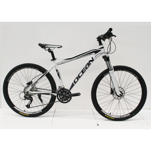 26 inch ALLOY FRAME MOUNTAIN BIKE MECHANICAL LOCK OUT SUS FORK