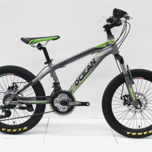 "20""ALLOY FRAME MTB MOUNTAIN BIKE"