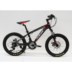 20 INCHES ALLOY FRAME MOUNTAIN BIKE