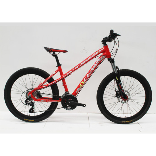 """26""""ALLOY FRAME  STEEL LOCK OUT SUSPENSION FORK MOUNTAIN BIKES"""