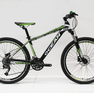"26""ALLOY FRAME  MECHANICAL LOCK OUT SUS FORK MOUNTAIN BIKE"