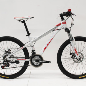 "24""ALLOY FRAME WITH STEEL SUS FORK MOUNTAIN BIKE"