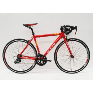700C RACING ALLOY FRAME ROAD BIKE