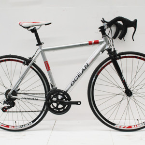 700C RACING ALLOY FRAME STEEL RIGID FORK ROAD BIKE