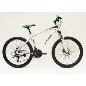 "26""STEEL FRAME STEEL MECHANICAL SUSPENSION FORK MOUNTAIN BIKE"