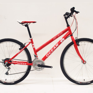 "26""STEEL FRAME STEEL RIGID FORK CITY BIKE"