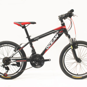 "20""STEEL FRAME KIDS BICYCLE"