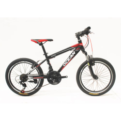 """20""""STEEL FRAME KIDS BICYCLE"""