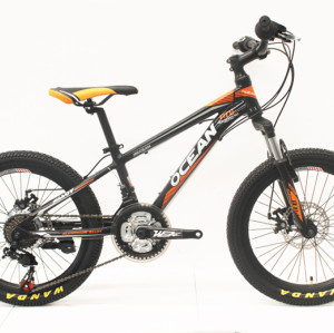 "20""STEEL FRAME STEEL SUSPENSION FORK MOUNTAIN BIKE"