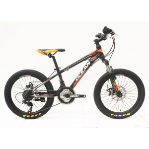 20 INCH STEEL FRAME STEEL SUSPENSION FORK MOUNTAIN BIKE