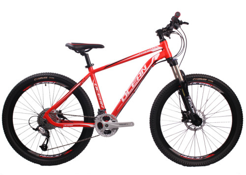 Lockable suspension fork Mountain bike 26 inch Alloy frame CHINA DH MTB