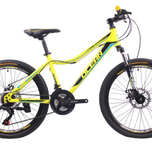 24 inch Steel frame steel fork SHIMANO 21 speed Disc brake Mountain bike MTB